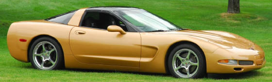 1998 Aztec Gold Corvette #10