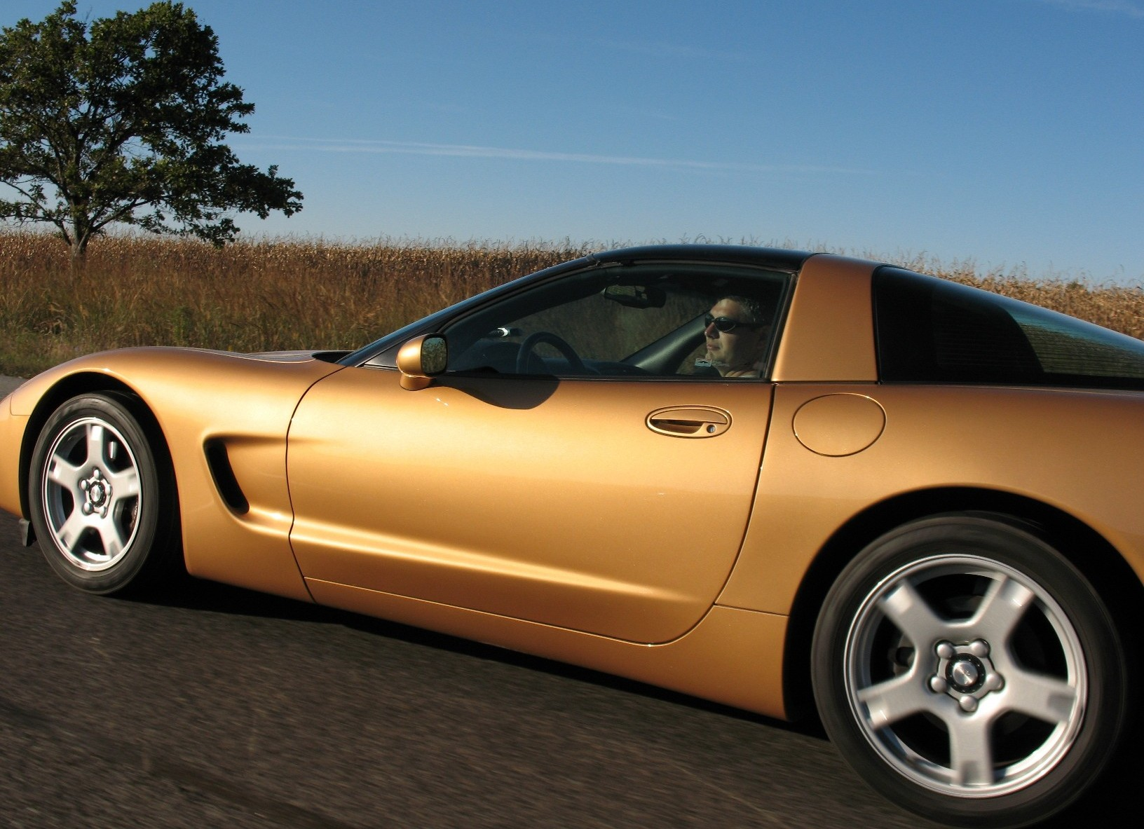 1998 Aztec Gold Corvette #5